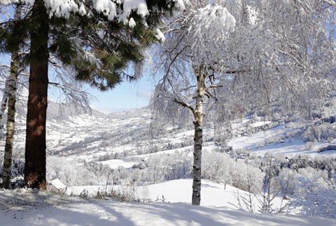 view on valley in winter isere grenoble french alps